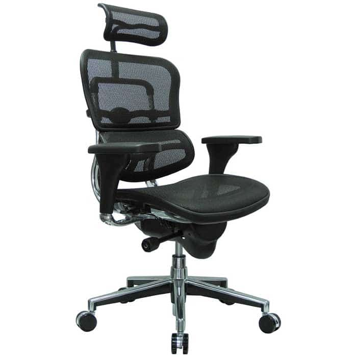 Ergohuman High Back Swivel Chair with Headrest