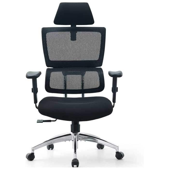 Ticova Ergonomic Office Chair High Back Desk Chair with Elastic Lumbar Support