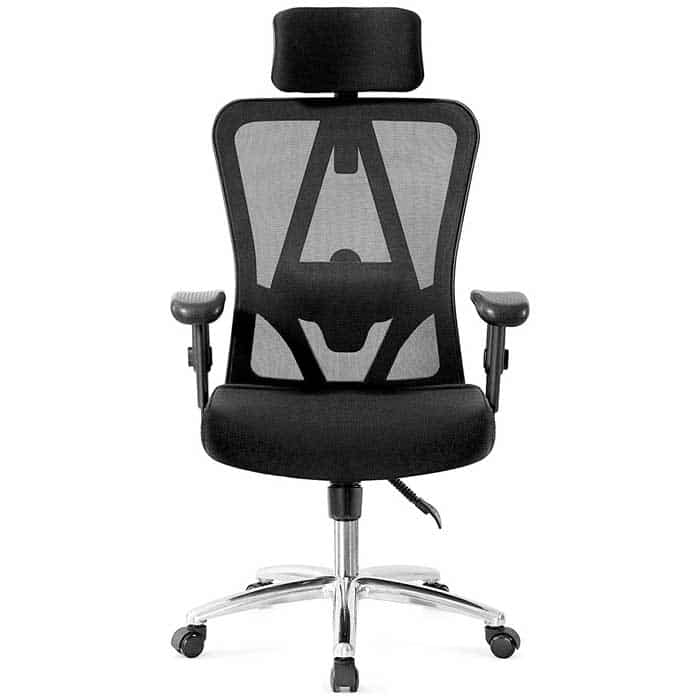 Ticova Ergonomic Office Chair with Adjustable Headrest Armrest and Lumbar Support